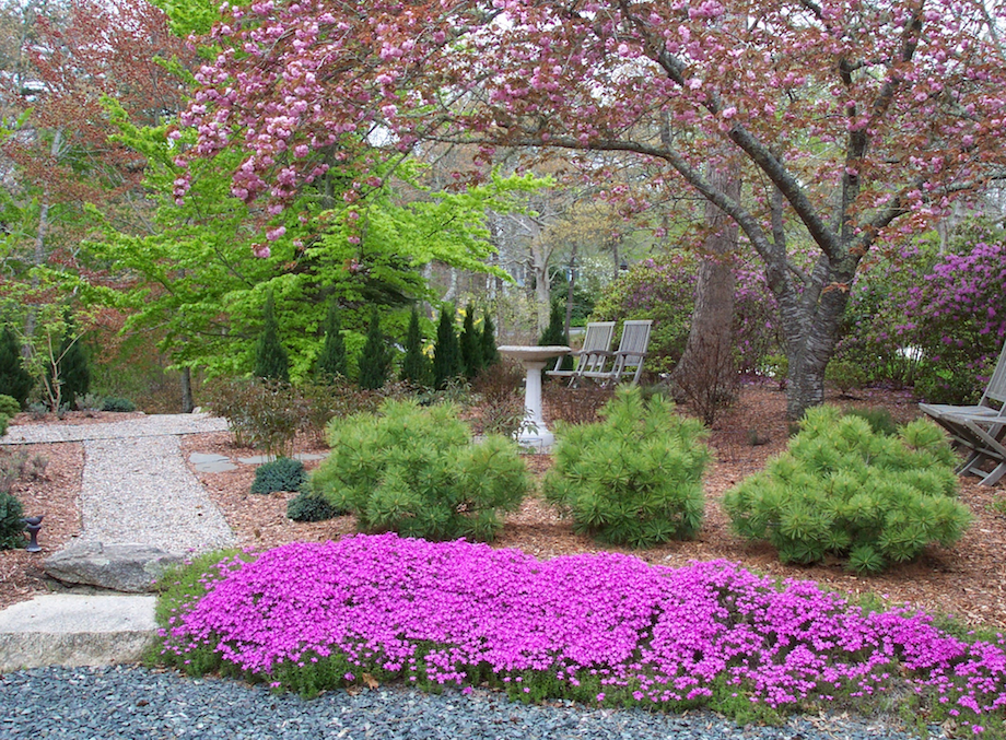 little eden gardens landscape design consulting